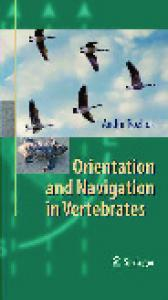 Andrii Rozhok. Orientation and Navigation in Vertebrates