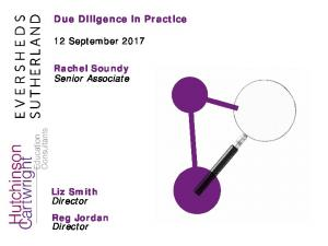 Due Diligence in Practice