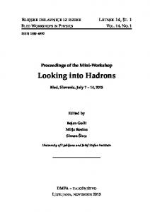 Looking into Hadrons