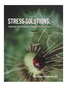 STRESS SOLUTIONS: TRIED AND TRUE RESILIENCY STRATEGIES FOR BUSY LIVES BY PATRICIA MORGAN, MA CCC